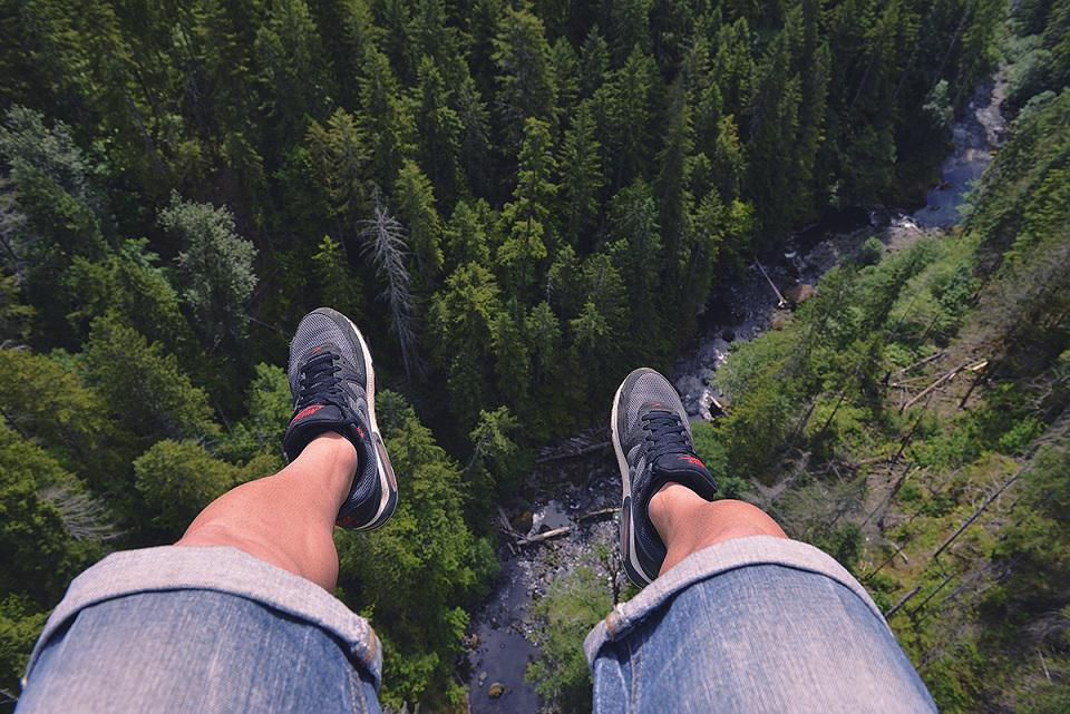 Φωτογραφία ημέρας: Και απ' τα δάση πιο ψηλά