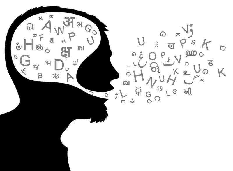 Mind Language