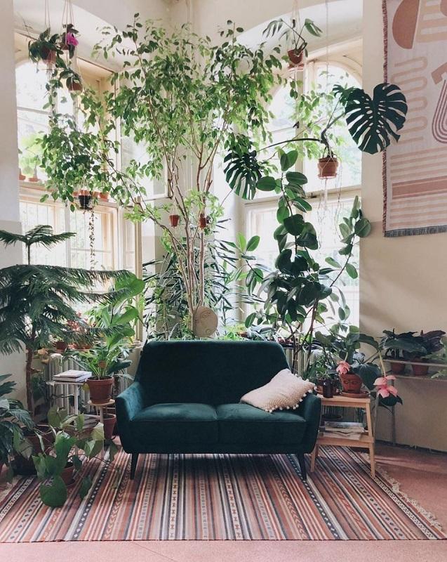 Urban Jungle- Η πιο πρόσφατη τάση εσωτερικής διακόσμησης με εμφανή την ανάγκη για μεταφορά της φύσης εντός αστικού τοπίου.