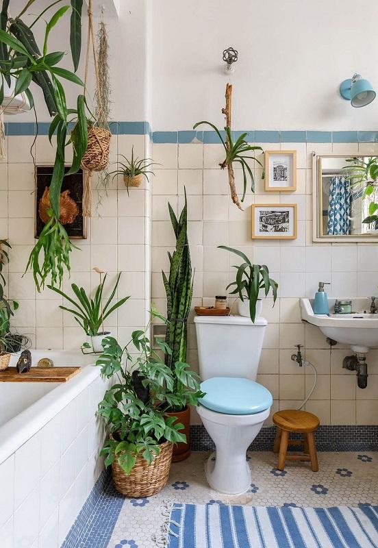 Με την προσθήκη φυτών ακόμη και στο μπάνιο, αναβαθμίζεται άμεσα η εικόνα του.