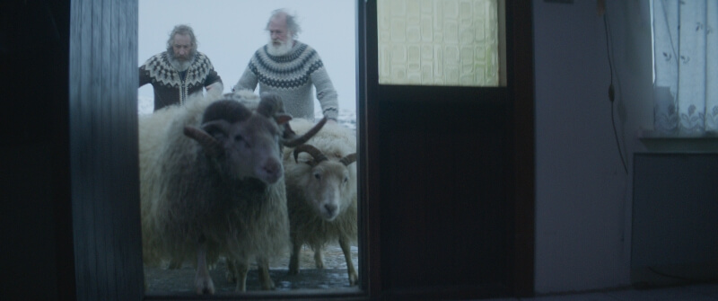 Στην Καρδιά Του Ευρωπαϊκού Χειμώνα Με Επτά Ταινίες