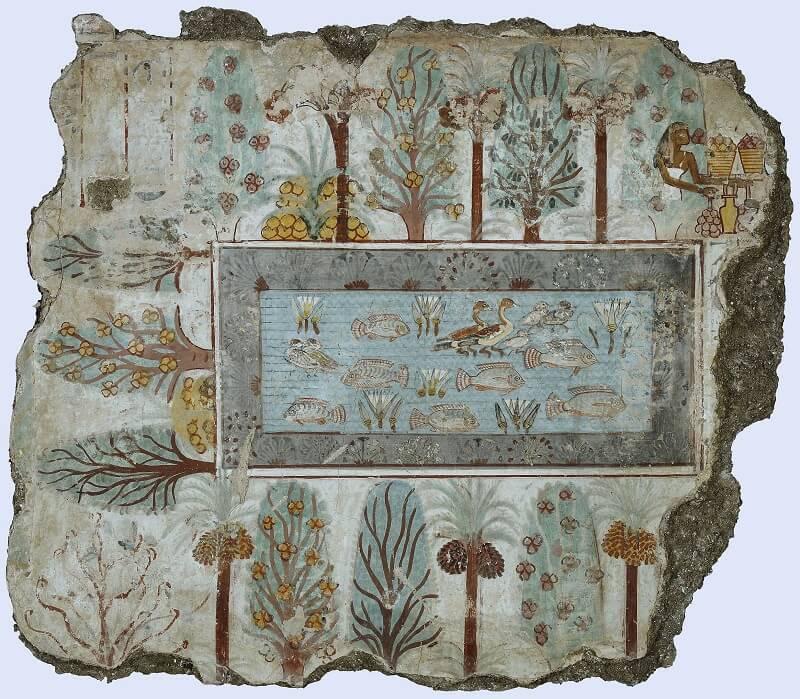 Τμήμα τοιχογραφίας από τον Τάφο του Nebamun, στις Θήβες (περ. 1350 π.Χ.). Απεικονίζεται ο κήπος της έπαυλης του Nebamun.
