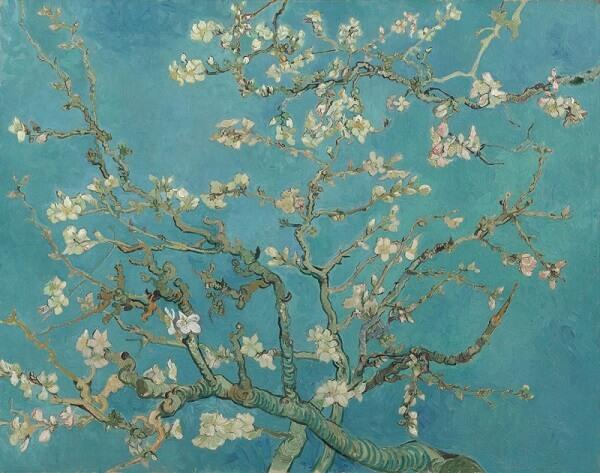 Vincent Van Gogh, Almond Blossom, 1890