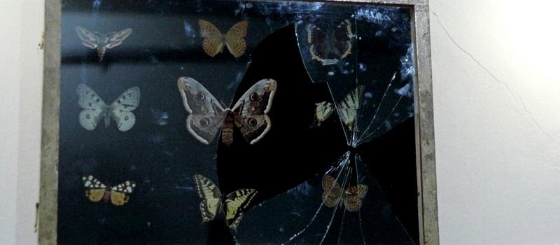 La corta notte delle bambole di vetro, Aldo Lado (1971)